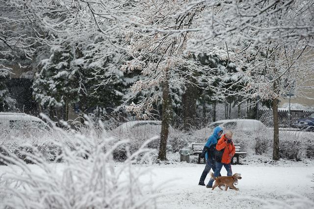 Snow closing information
