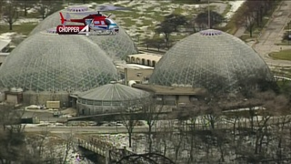 Engaged couples scrambling after Domes closure