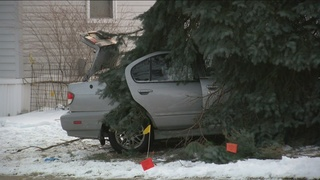 Three injured when car crashes into tree