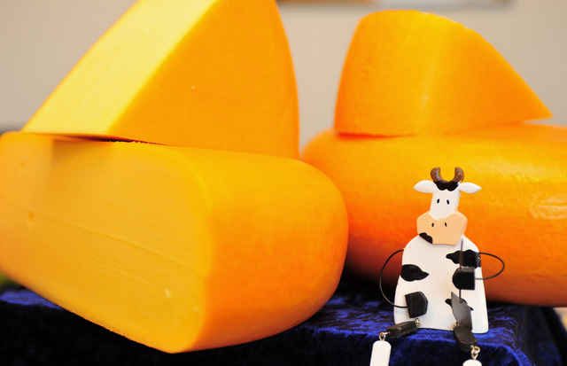 That stolen cheese? It was thrown in a landfill