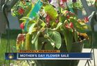 Get flowers for mom at Oak Creek library sale