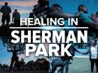 Sherman Park Coverage