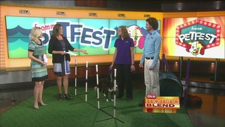 Petfest 2016 is This Weekend!