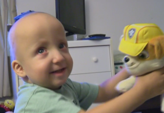 Muskego toddler needs new kidney