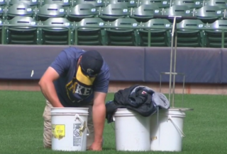 What happens to Miller Park's grass in winter?