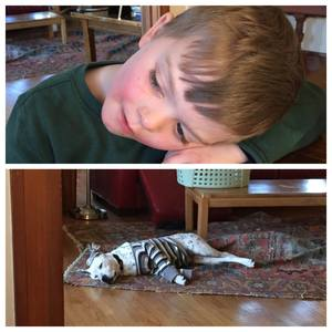 The boys wore each other out on the first afternoon together.