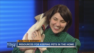 Ask the Expert: Resources for keeping pets