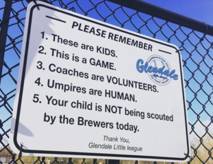 Local Little League to parents: 'This is a GAME'