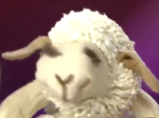 See 'Lamb Chop' perform at the State Fair