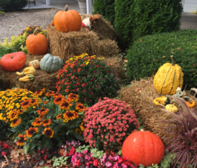 Halloween events around the Milwaukee area