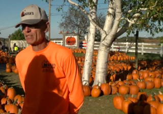 Pumpkins for pancreatic cancer research