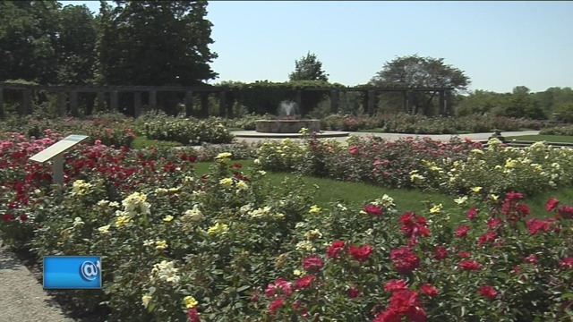 Milwaukee County Residents Can Get Into The Boerner Botanical Gardens For  Free On Tuesday