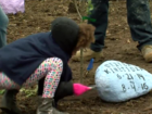 Guardians of the Children build tree monuments