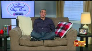 Andy Cohen and the National Dog Show