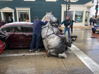 Horse-drawn carriage passenger details accident