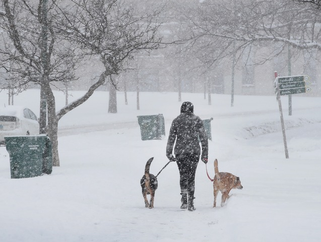Winter Storm Forecast Improving; Nearly 7 Inches Today, 10+ By Sunday