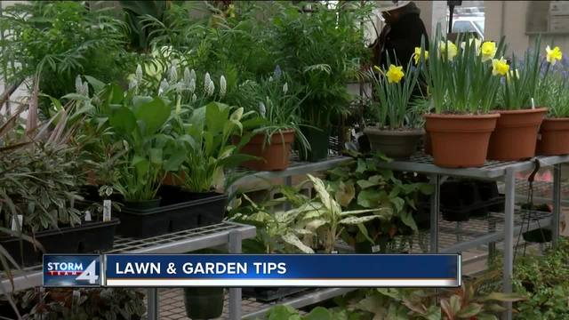 Spring Preps For Your Lawn Garden Tmj4 Milwaukee Wi