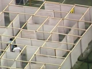 Milwaukee Maze opens for the summer
