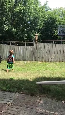 Fences For Dogs Backyard adorable toddler plays fetch with dog despite backyard fence [video