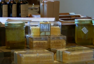 Weather causes honey production decline