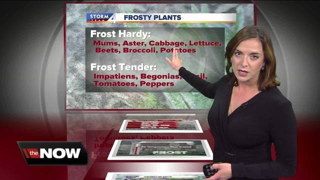 Geeking Out- Frost advisory hitting southeastern Wisconsin Friday night